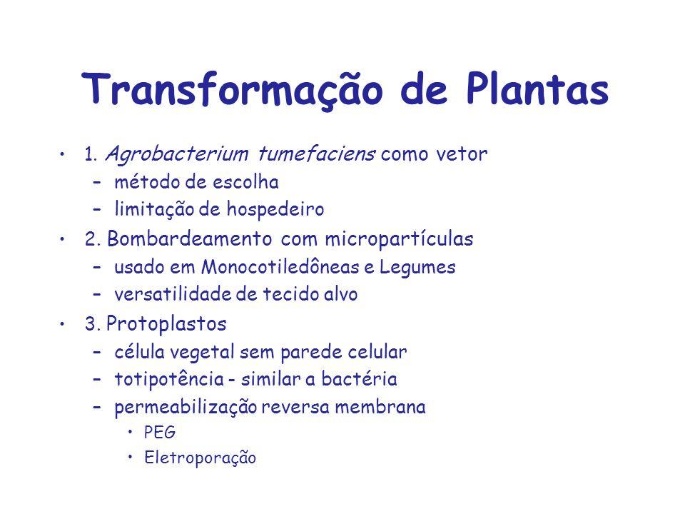 Transformação de Plantas 1. Agrobacterium tumefaciens como vetor –método de escolha –limitação de hospedeiro 2. Bombardeamento com micropartículas –us