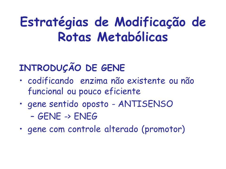 Estratégias de Modificação de Rotas Metabólicas INTRODUÇÃO DE GENE codificando enzima não existente ou não funcional ou pouco eficiente gene sentido o