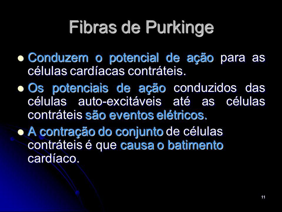 11 Fibras de Purkinge Conduzem o potencial de ação para as células cardíacas contráteis. Conduzem o potencial de ação para as células cardíacas contrá