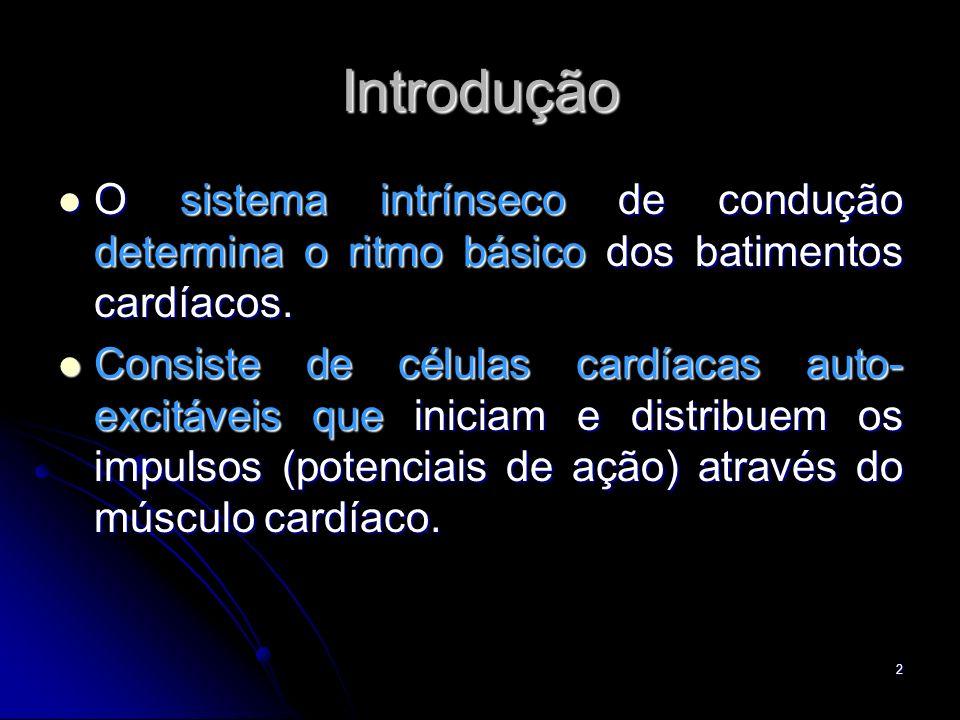 2 Introdução O sistema intrínseco de condução determina o ritmo básico dos batimentos cardíacos. O sistema intrínseco de condução determina o ritmo bá