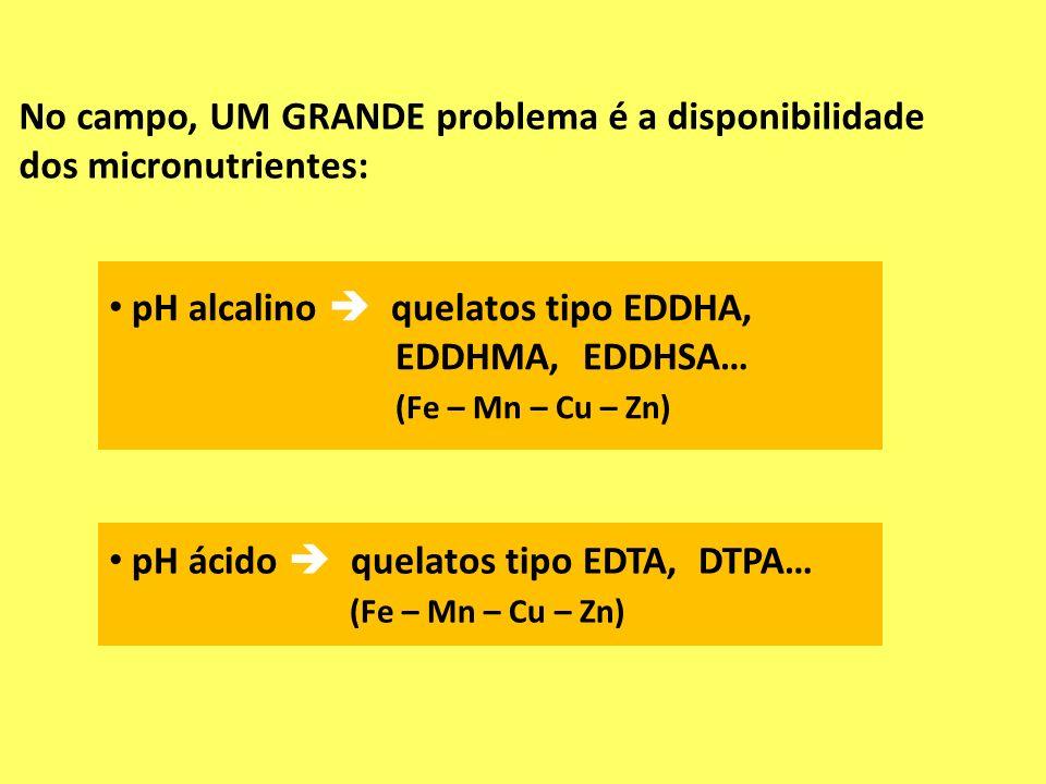 No campo, UM GRANDE problema é a disponibilidade dos micronutrientes: pH alcalino quelatos tipo EDDHA, EDDHMA, EDDHSA… (Fe – Mn – Cu – Zn) pH ácido qu