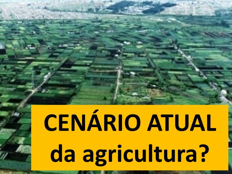 CENÁRIO ATUAL da agricultura?