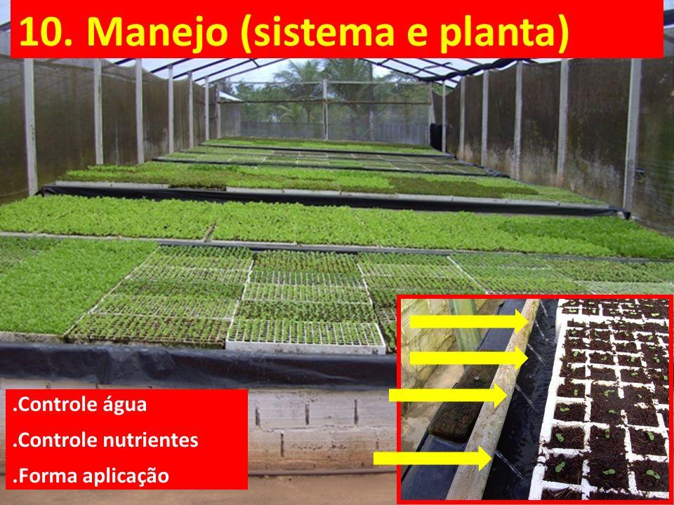 10. Manejo (sistema e planta).Controle água.Controle nutrientes.Forma aplicação