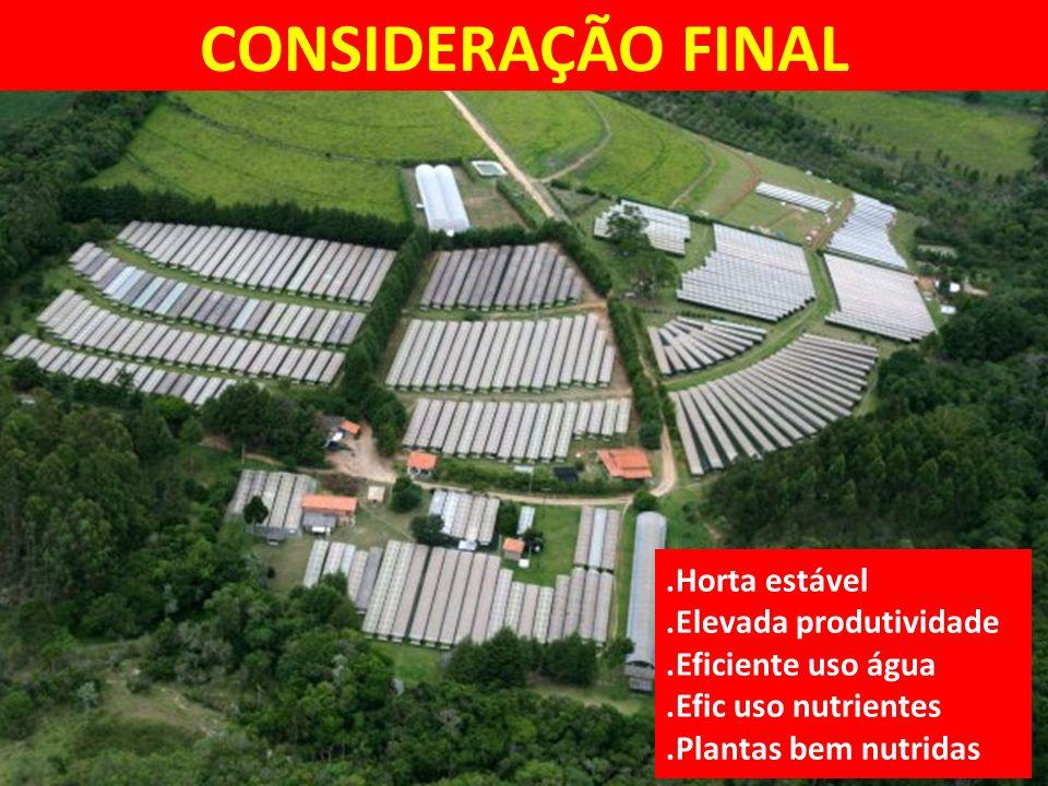 CONSIDERAÇÃO FINAL.Horta estável.Elevada produtividade.Eficiente uso água.Efic uso nutrientes.Plantas bem nutridas