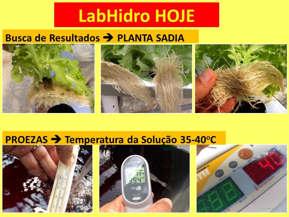LabHidro HOJE PROEZAS Temperatura da Solução 35-40 o C Busca de Resultados PLANTA SADIA