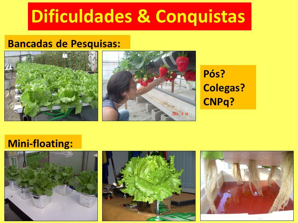 Dificuldades & Conquistas Mini-floating: Bancadas de Pesquisas: Pós? Colegas? CNPq?