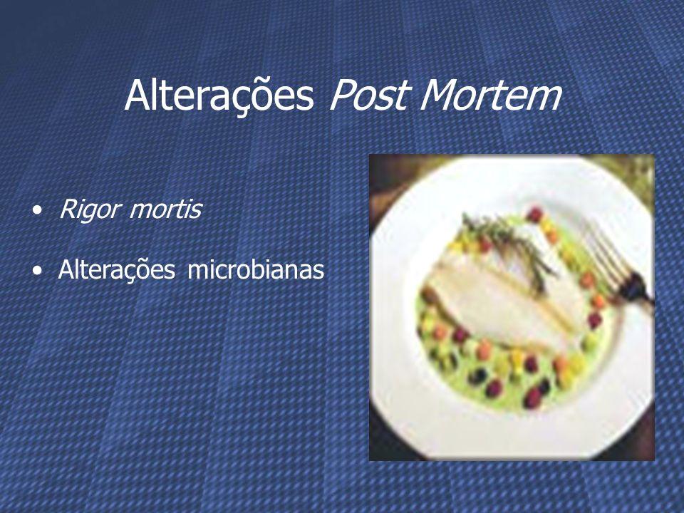 Rigor mortis Alterações microbianas Alterações Post Mortem