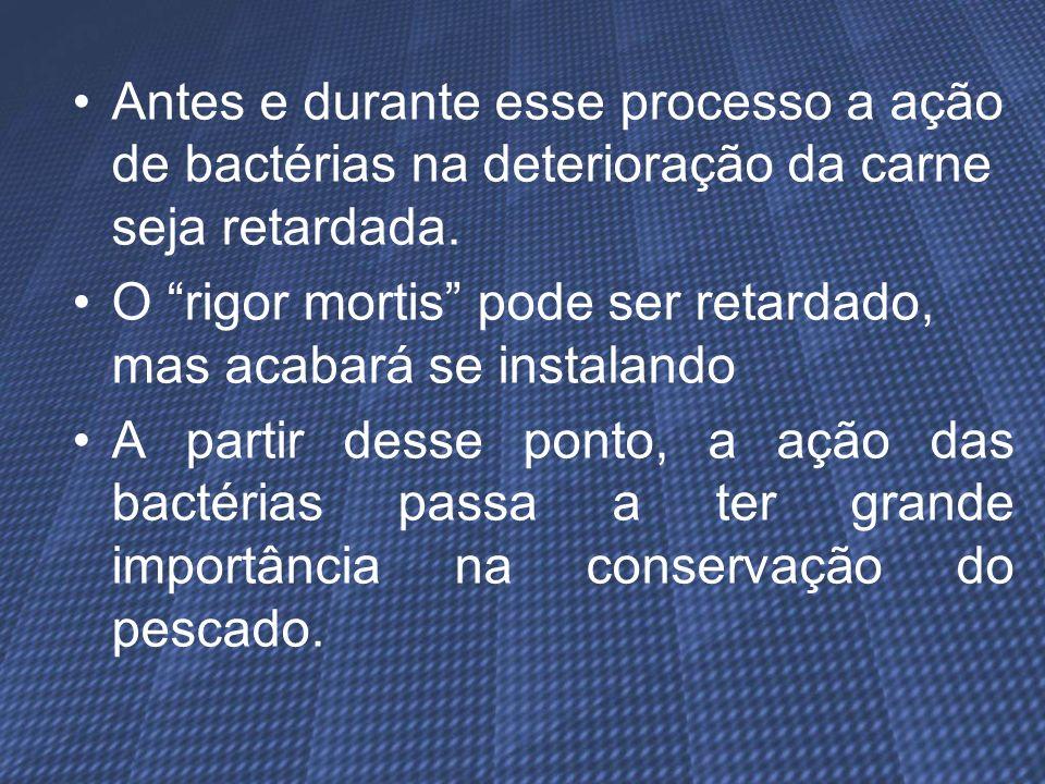 Antes e durante esse processo a ação de bactérias na deterioração da carne seja retardada. O rigor mortis pode ser retardado, mas acabará se instaland