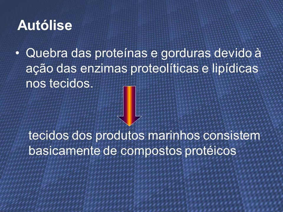 Quebra das proteínas e gorduras devido à ação das enzimas proteolíticas e lipídicas nos tecidos. Autólise tecidos dos produtos marinhos consistem basi