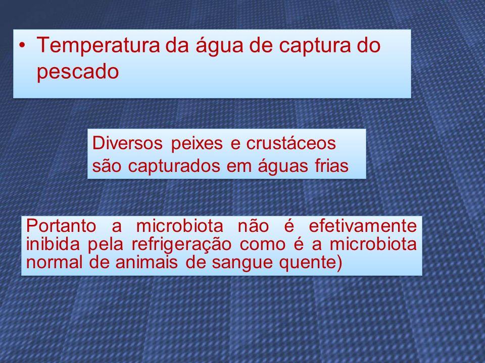 Temperatura da água de captura do pescado Diversos peixes e crustáceos são capturados em águas frias Portanto a microbiota não é efetivamente inibida