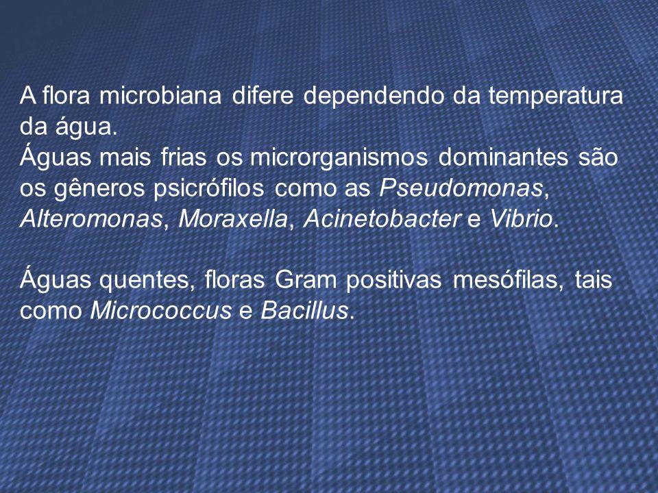A flora microbiana difere dependendo da temperatura da água. Águas mais frias os microrganismos dominantes são os gêneros psicrófilos como as Pseudomo