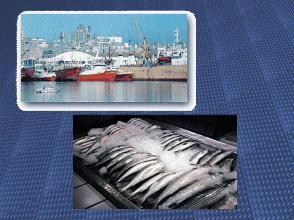 Segurança Alimentar Dos 1.586 surtos de doenças de origem alimentar relatados entre 1977 e 1984, os alimentos marinhos foram responsáveis por 24,8%.