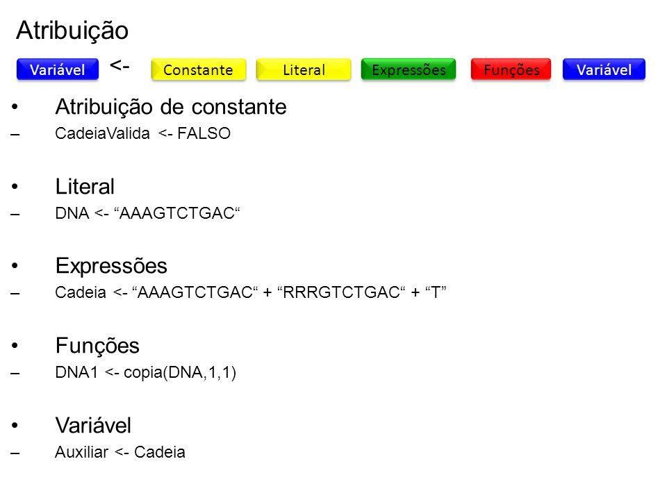 Atribuição Variável Constante ExpressõesFunções <- Literal Variável Atribuição de constante –CadeiaValida <- FALSO Literal –DNA <- AAAGTCTGAC Expressõ