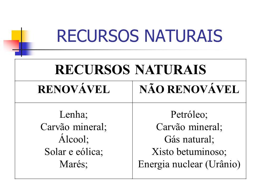 HIDRELÉTRICAS VANTAGENSDESVANTAGENS -Utiliza-se de um recurso renovável (água); -O custo operacional é baixo, comparativamente; -São baixos os índices de poluição; -Só podem ser instaladas em locais favoráveis; -Exigem, por isso, a instalação de considerável rede de transmissão; -Seu potencial é limitado, apesar de usarem recursos renováveis;