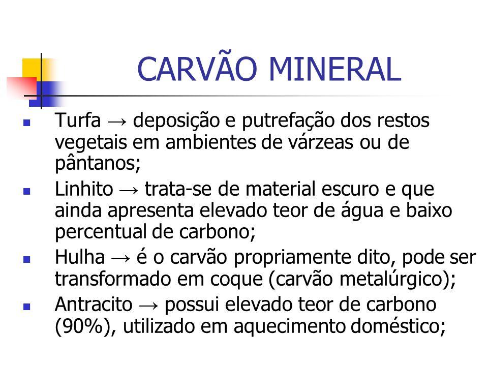 CARVÃO MINERAL Utilização: Indústria do transporte: navegação e ferrovia a vapor; Termoelétrica: usinas de produção de energia; Siderúrgicas: carvão coque;