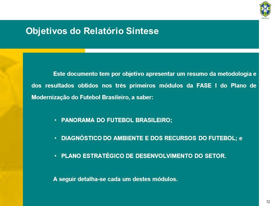 12 Objetivos do Relatório Síntese Este documento tem por objetivo apresentar um resumo da metodologia e dos resultados obtidos nos três primeiros módu