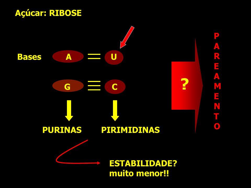 PURINAS PIRIMIDINAS Açúcar: RIBOSE Bases A U G C PAREAMENTOPAREAMENTO ? ESTABILIDADE? muito menor!!