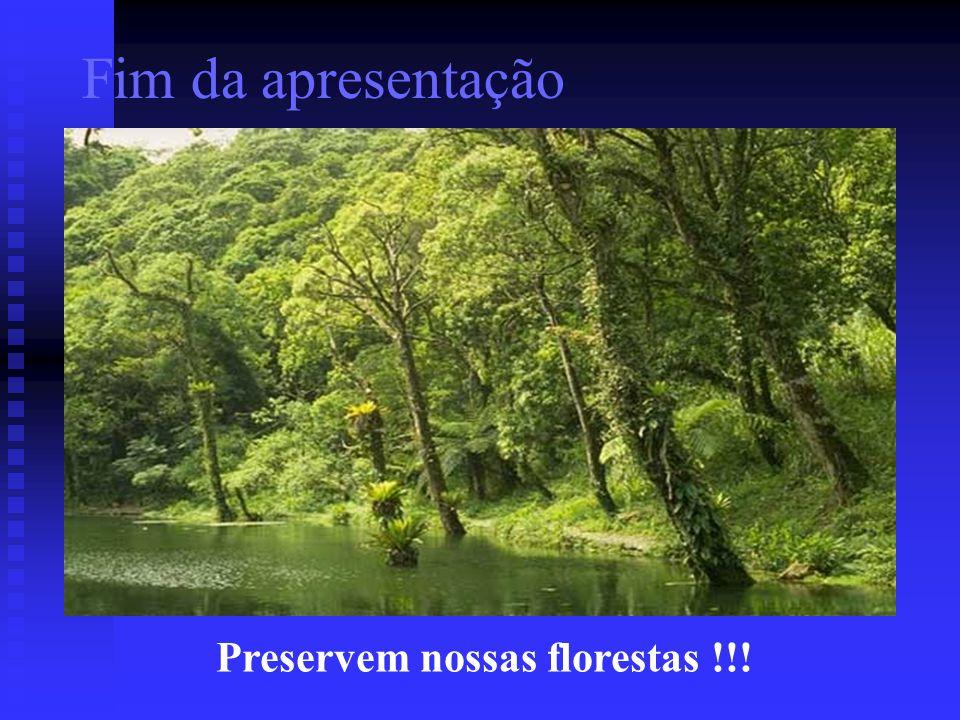Fim da apresentação Preservem nossas florestas !!!