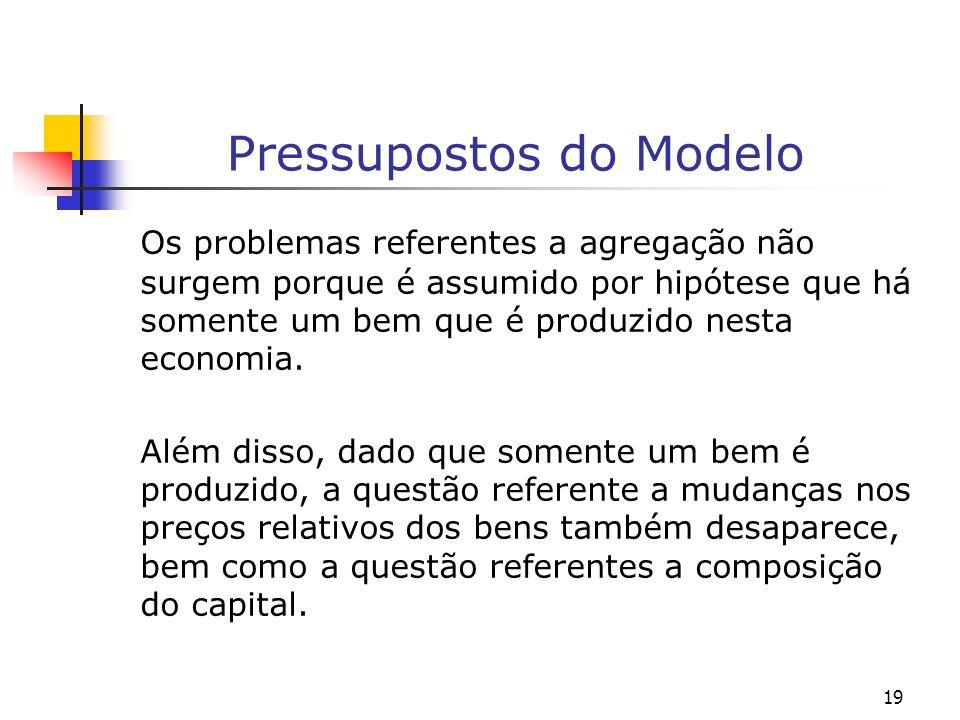 19 Pressupostos do Modelo Os problemas referentes a agregação não surgem porque é assumido por hipótese que há somente um bem que é produzido nesta ec