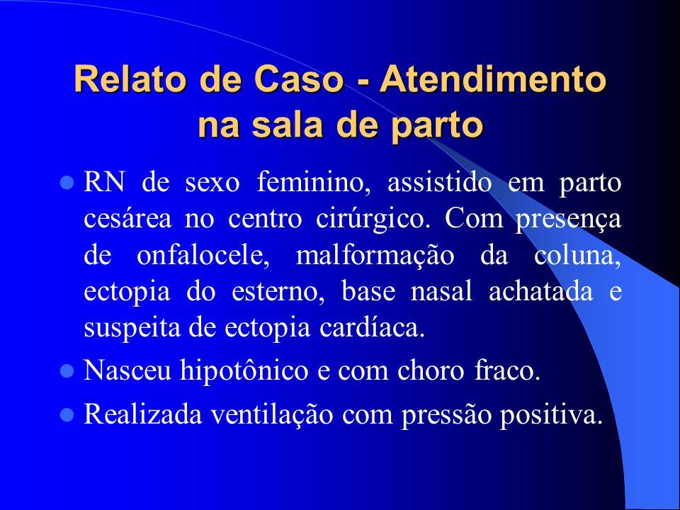 Relato de Caso - Atendimento na sala de parto RN de sexo feminino, assistido em parto cesárea no centro cirúrgico. Com presença de onfalocele, malform
