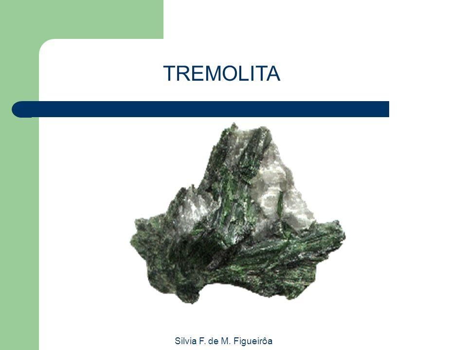 Silvia F. de M. Figueirôa TREMOLITA