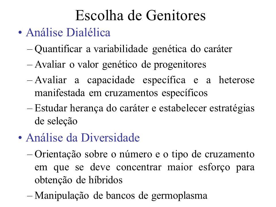Escolha de Genitores Análise Dialélica –Quantificar a variabilidade genética do caráter –Avaliar o valor genético de progenitores –Avaliar a capacidad