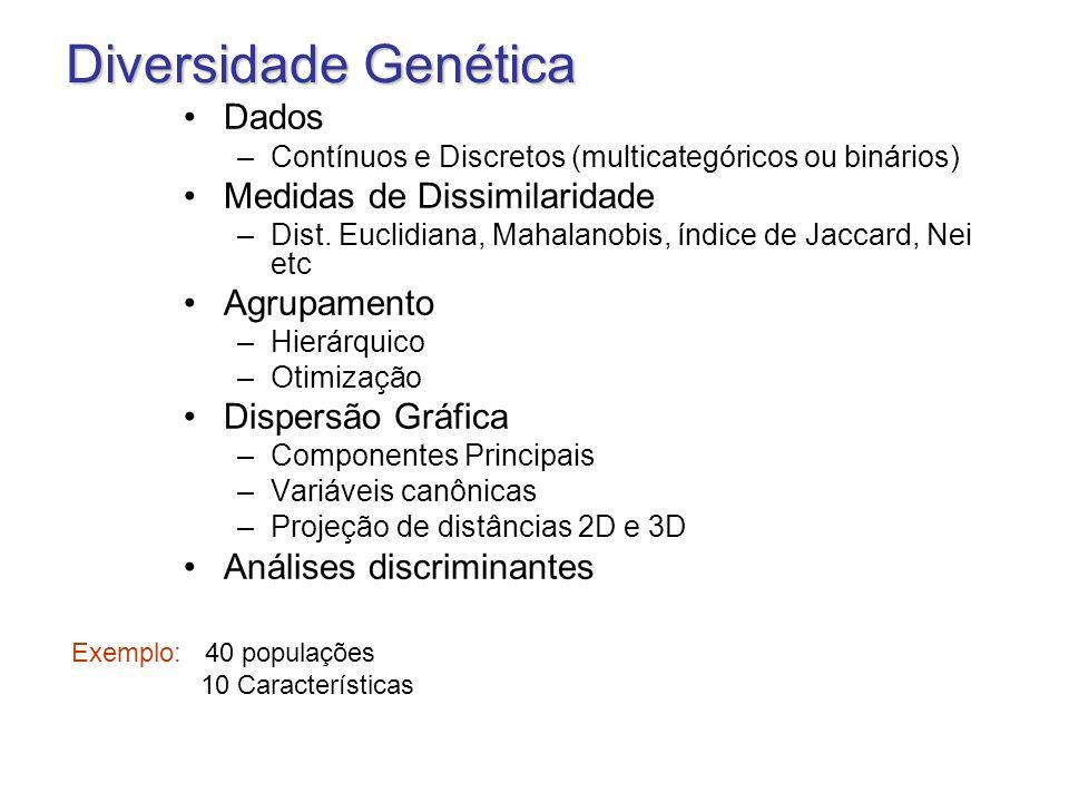 Diversidade Genética Dados –Contínuos e Discretos (multicategóricos ou binários) Medidas de Dissimilaridade –Dist. Euclidiana, Mahalanobis, índice de