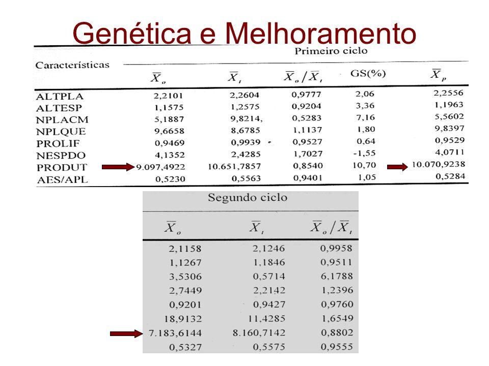 Genética e Melhoramento