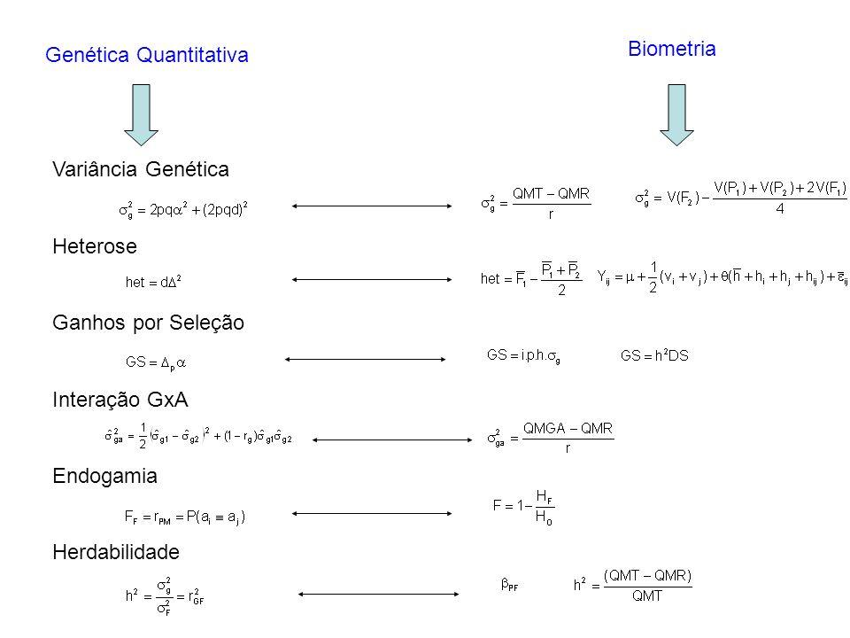 Genética Quantitativa Biometria Variância Genética Heterose Ganhos por Seleção Interação GxA Endogamia Herdabilidade