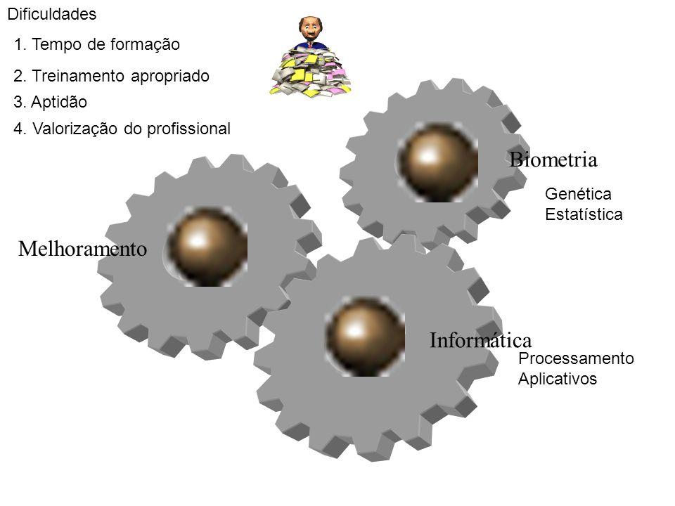 Melhoramento Biometria Informática Genética Estatística Processamento Aplicativos Dificuldades 1. Tempo de formação 2. Treinamento apropriado 3. Aptid