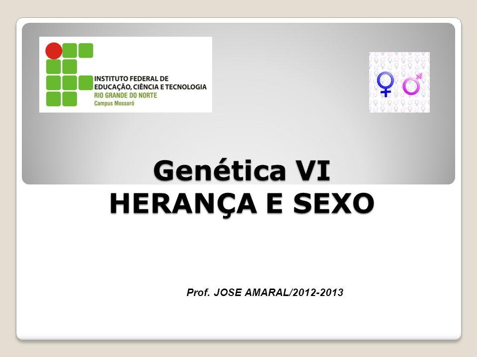 Genética VI HERANÇA E SEXO Prof. JOSE AMARAL/2012-2013