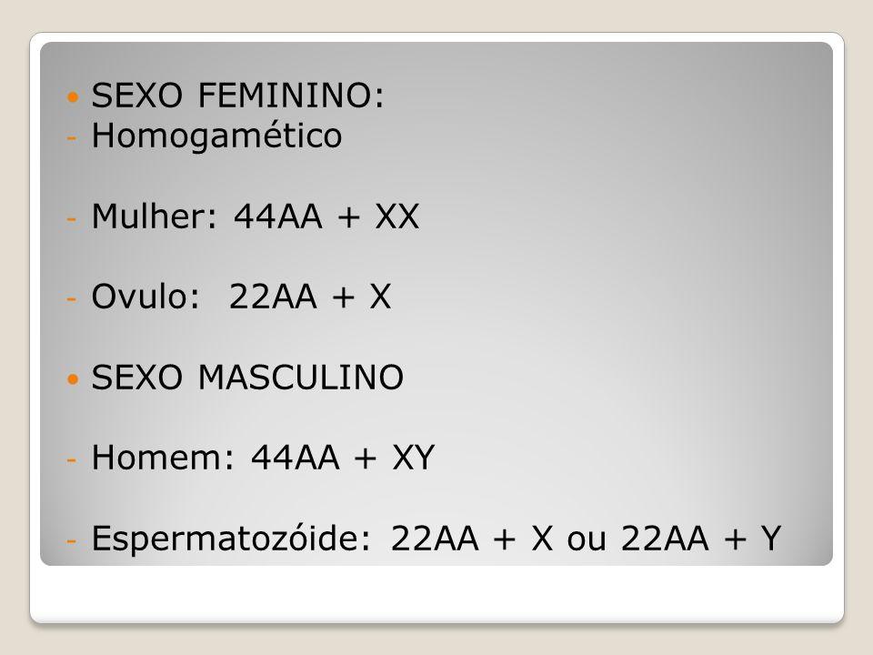 SEXO FEMININO: - Homogamético - Mulher: 44AA + XX - Ovulo: 22AA + X SEXO MASCULINO - Homem: 44AA + XY - Espermatozóide: 22AA + X ou 22AA + Y