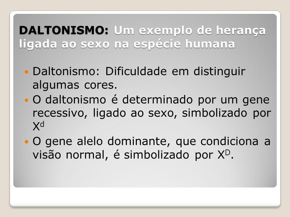 DALTONISMO: Um exemplo de herança ligada ao sexo na espécie humana Daltonismo: Dificuldade em distinguir algumas cores. O daltonismo é determinado por