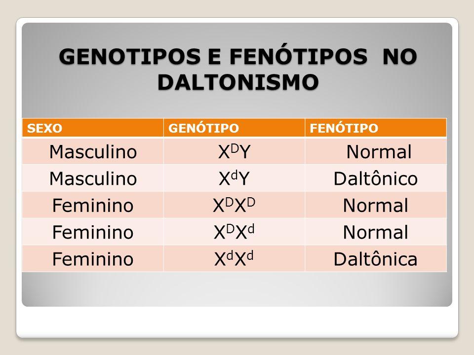 GENOTIPOS E FENÓTIPOS NO DALTONISMO SEXOGENÓTIPOFENÓTIPO MasculinoXDYXDY Normal MasculinoXdYXdYDaltônico FemininoXDXDXDXD Normal FemininoXDXdXDXd Norm