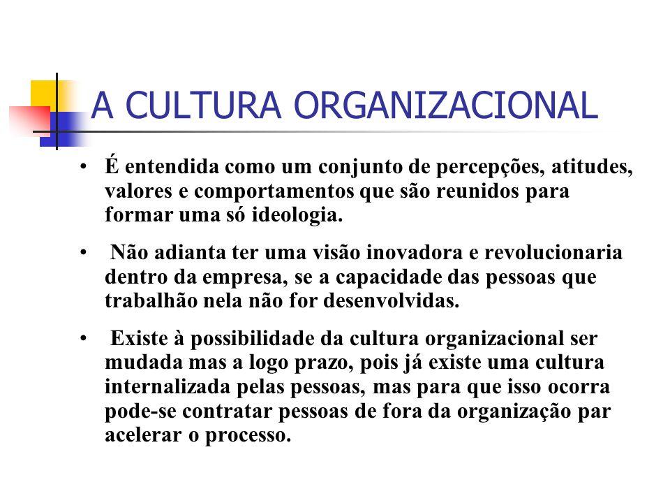 A CULTURA ORGANIZACIONAL É entendida como um conjunto de percepções, atitudes, valores e comportamentos que são reunidos para formar uma só ideologia.