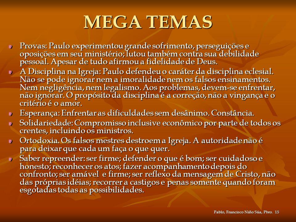 Pablo, Francisco Niño Súa, Pbro.15 MEGA TEMAS Provas: Paulo experimentou grande sofrimento, perseguições e oposições em seu ministério; lutou também c