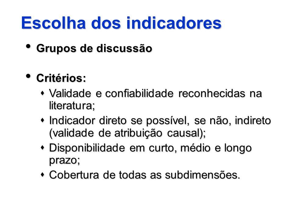 Escolha dos indicadores Grupos de discussão Grupos de discussão Critérios: Critérios: Validade e confiabilidade reconhecidas na literatura; Validade e
