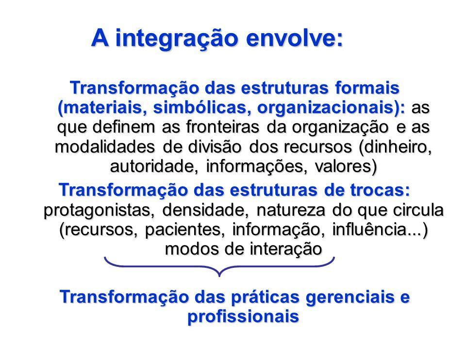 Transformação das estruturas formais (materiais, simbólicas, organizacionais): as que definem as fronteiras da organização e as modalidades de divisão