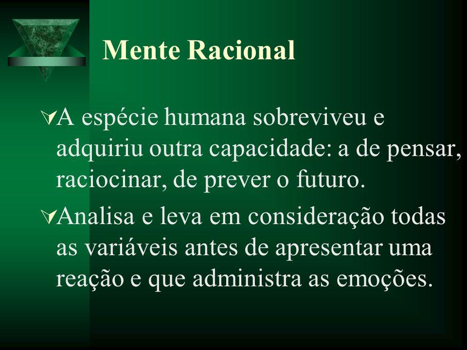 Mente Racional A espécie humana sobreviveu e adquiriu outra capacidade: a de pensar, raciocinar, de prever o futuro. Analisa e leva em consideração to