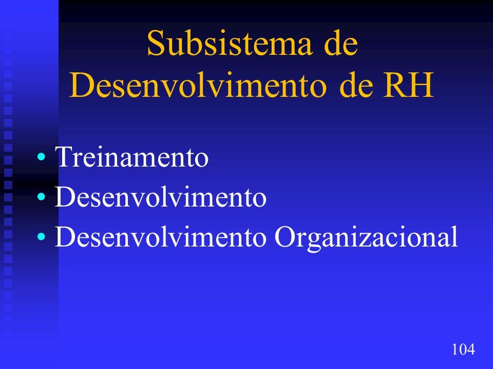Subsistema de Desenvolvimento de RH Treinamento Desenvolvimento Desenvolvimento Organizacional 104
