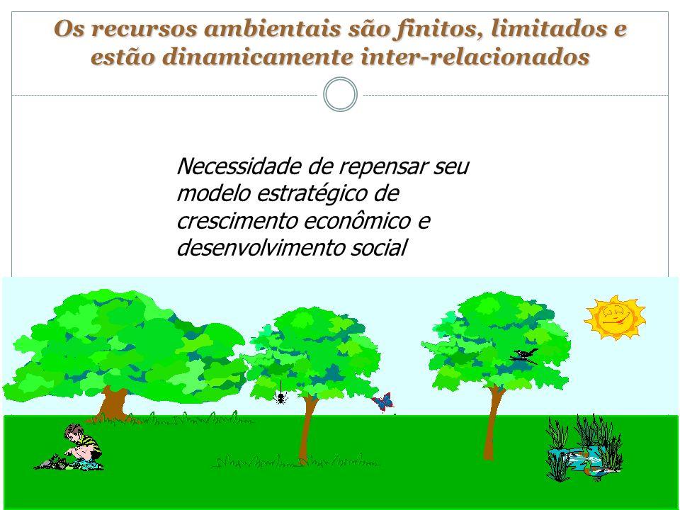 Os recursos ambientais são finitos, limitados e estão dinamicamente inter-relacionados Necessidade de repensar seu modelo estratégico de crescimento e