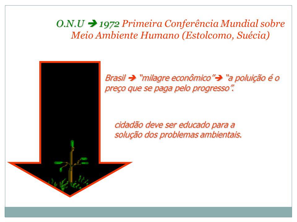 O.N.U 1972 O.N.U 1972 Primeira Conferência Mundial sobre Meio Ambiente Humano (Estolcomo, Suécia) Brasil milagre econômico a poluição é o preço que se
