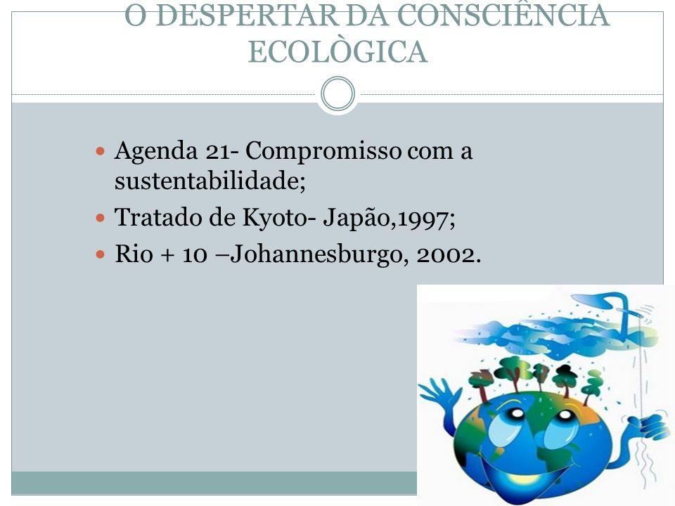 O DESPERTAR DA CONSCIÊNCIA ECOLÒGICA Agenda 21- Compromisso com a sustentabilidade; Tratado de Kyoto- Japão,1997; Rio + 10 –Johannesburgo, 2002.