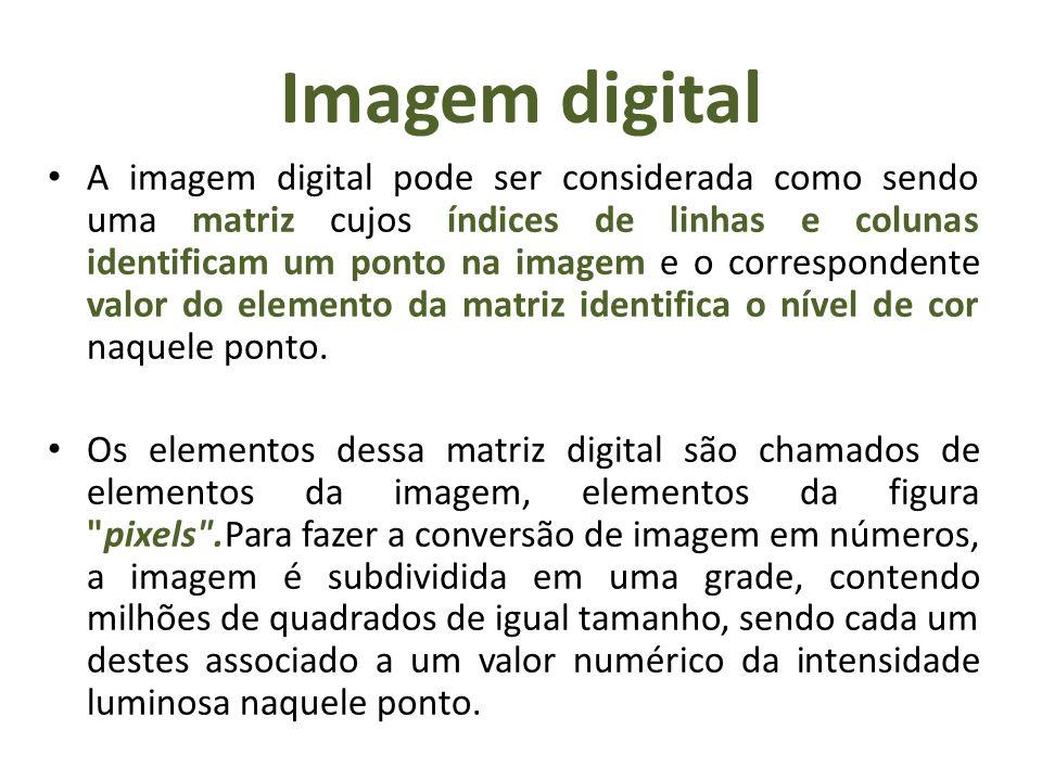 Imagem digital A imagem digital pode ser considerada como sendo uma matriz cujos índices de linhas e colunas identificam um ponto na imagem e o corres
