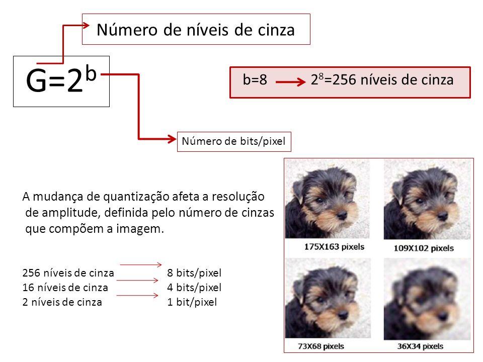 Número de níveis de cinza G=2 b Número de bits/pixel b=8 2 8 =256 níveis de cinza A mudança de quantização afeta a resolução de amplitude, definida pe