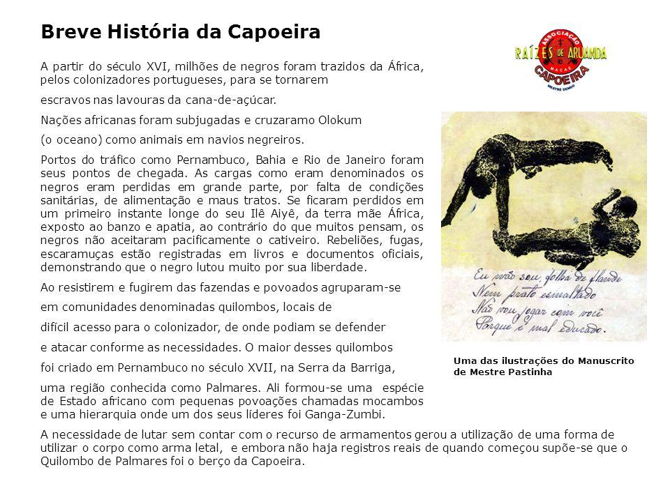 Funcionalmente luta de ataque e defesa, a Capoeira como a religiosidade africana foi disfarçada em dança.