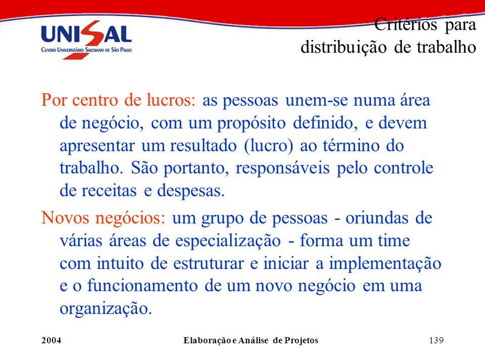 2004Elaboração e Análise de Projetos139 Critérios para distribuição de trabalho Por centro de lucros: as pessoas unem-se numa área de negócio, com um