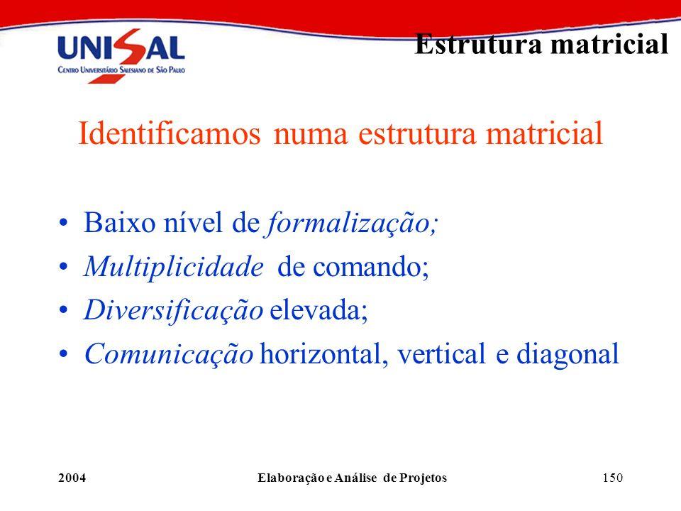 2004Elaboração e Análise de Projetos150 Estrutura matricial Identificamos numa estrutura matricial Baixo nível de formalização; Multiplicidade de coma