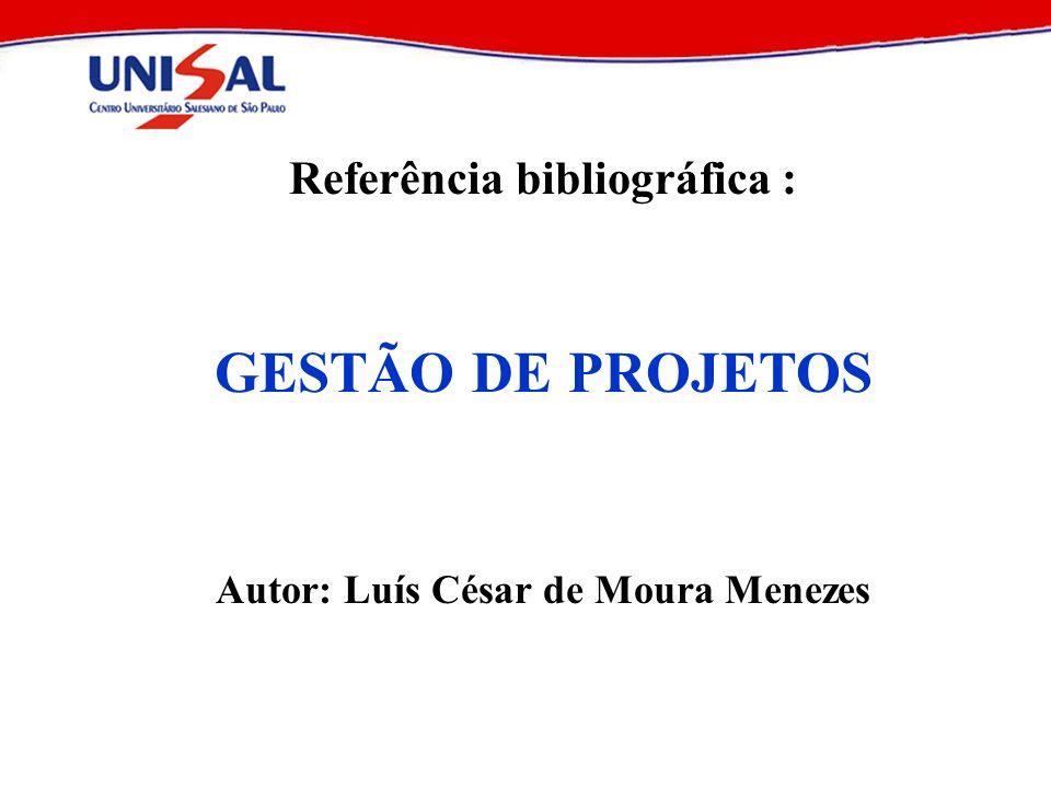 2004Elaboração e Análise de Projetos113 Project Chart