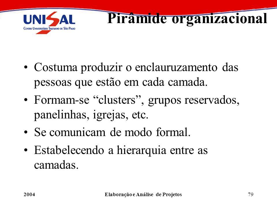 2004Elaboração e Análise de Projetos79 Pirâmide organizacional Costuma produzir o enclauruzamento das pessoas que estão em cada camada. Formam-se clus